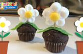vaso con margherita di marshmallow e mini muffin